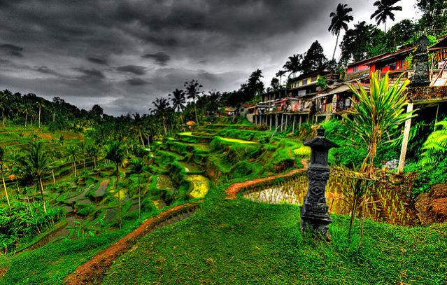 Venez découvrir les récits des voyageurs de Bali : coups de coeur, bon plans et conseils des passionnés de Bali