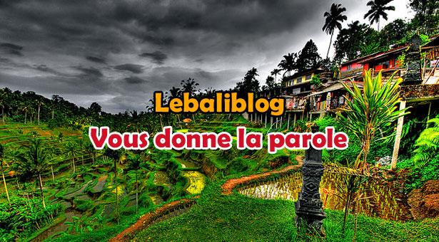 HDR-riziere-bali-lebaliblog