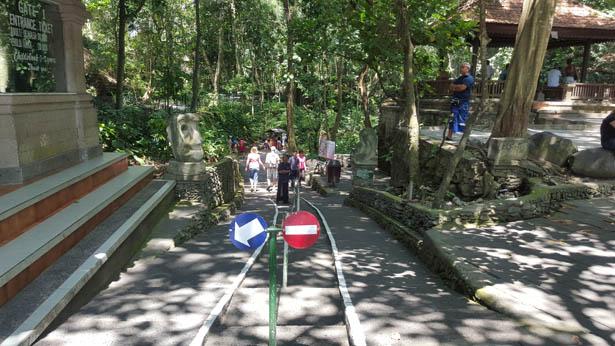 Visite de la Foret des Singes - Monkey Forest a Ubud (4)