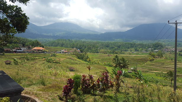Rizieres de Jatiluwih Unesco Tabanan Bali (4)