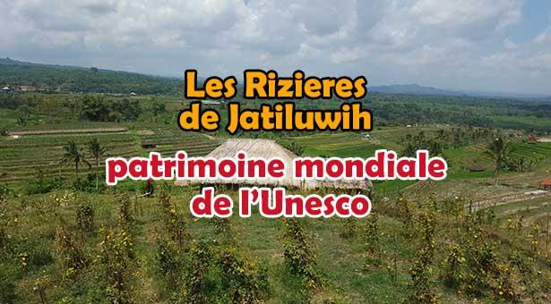 Visite des rizières de Jatiluwih a Tabanan