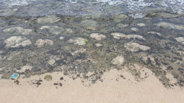 Plage de Balangan Plage Bali Blog Bali (26)