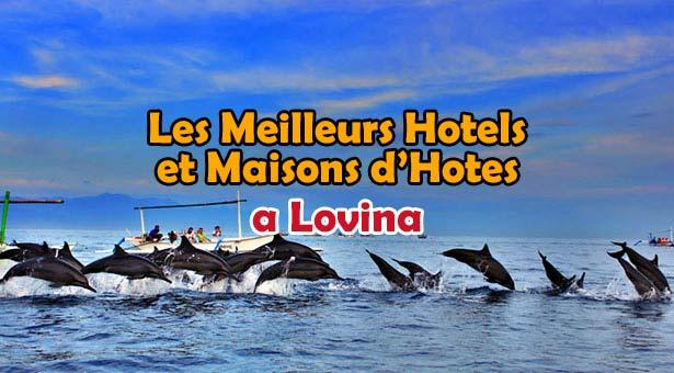 Hotel-Lovina-Dophins-Lovina-Bali-Blog-Bali