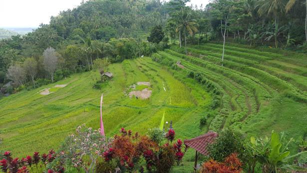 Sidemen Bali Blog bali