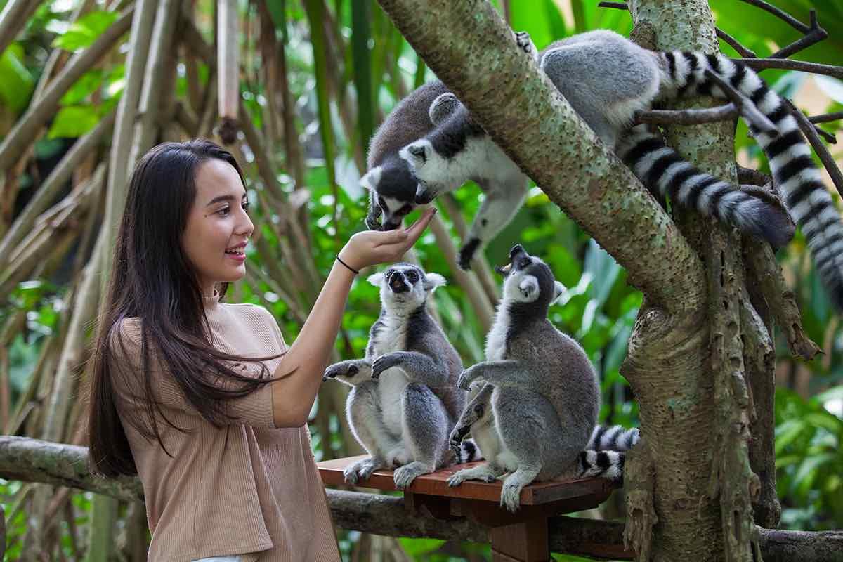 site de rencontre zoo)