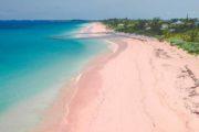 Guide complet pour visiter les îles Komodo à Florès en Indonésie