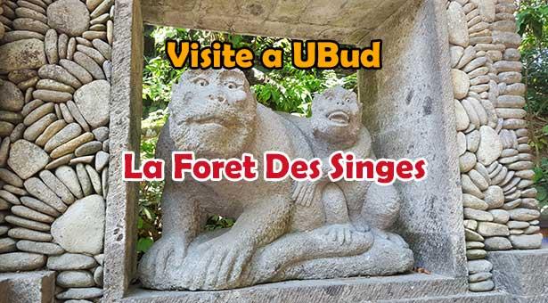 Visite de la Foret des Singes - Monkey Forest a Ubud