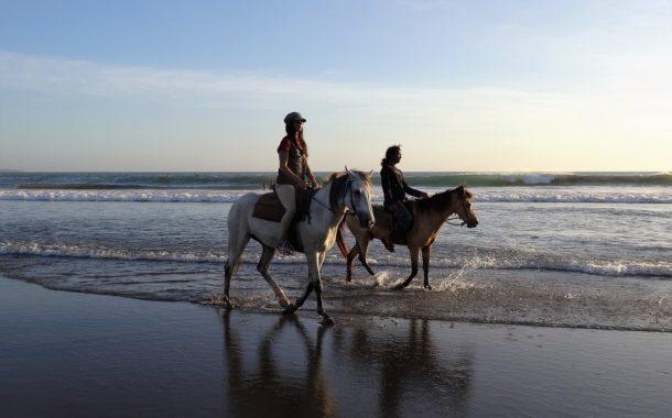 Réserver votre promenade à cheval dans les rizières et sur la plage à Bali